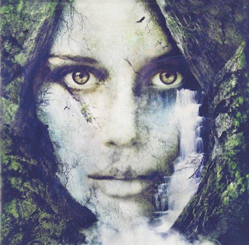 Earthwalker Deluxe Reissue by In Hearts Wake