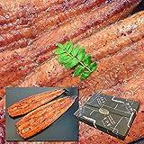 魚水島 国産 鰻うなぎ蒲焼き ふっくら厳選素材 約30cm特々大 約200g×3尾 父の日ギフト/土用丑の日/お中元