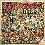 The Raft - Fat Freddy's Drop