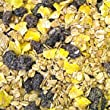 12.5 kg Dawn Chorus Blackbird and Thrush No Mess Raisin Mix For Wild Birds