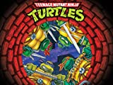 Teenage Mutant Ninja Turtles Season 10: The Complete Final Season: Divide and Conquer