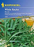 Rucola 'Wilde Rauke',1 Portion