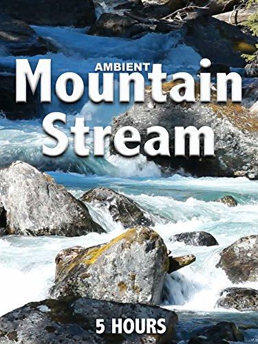 Ambient Mountain Stream