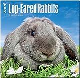 Lop-Eared Rabbits 2015 Square 12x12 (Multilingual Edition)