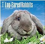 Lop-eared Rabbits 2015 - Kaninchen mi...