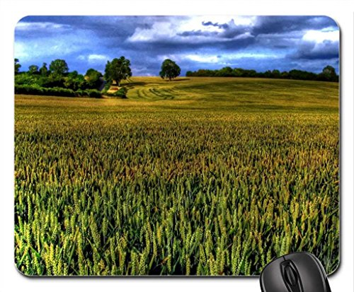 sizing-up-the-landscape-mouse-pad-mousepad-fields-mouse-pad