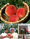 桃【特秀】山梨の桃 加納岩の桃 雨宮桃園産 2kg箱 大玉(6個から7個入り) ランキングお取り寄せ