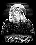 Reeves Bald Eagle Scraperfoil Artwork, Silver