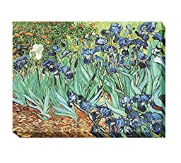 Irises, 1889 by Vincent Van Gogh Premium Gallery-Wrapped Canvas Giclee Art (Ready-to-Hang)