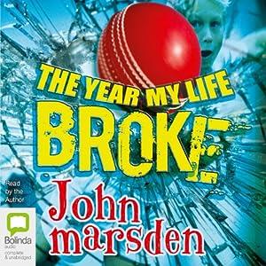 The Year My Life Broke Audiobook