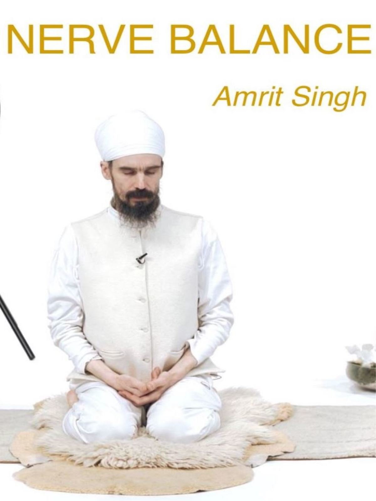 Nerve balance with Amrit Singh