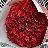 〔エルフルール〕バラの花束 60本 カラー:レッド 結婚記念日 プレゼント 薔薇 誕生日祝い 贈り物 還暦祝い クリスマスプレゼント 彼女