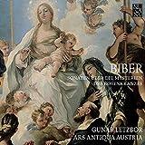 Biber: Sonaten uber die Mysterien des Rosenkranzes