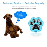 DICPOLIA Locator,Tracking Device,Smart WiFi Pet GPS Tracker Remote Wireless Finder Dog Cat Collar Locator SCA for Vehicles,Dogs,Keys,Cars, Kids, Persons,Travel,Key Finder,Pets (Sky Blue) (Color: Sky Blue, Tamaño: Free Size)