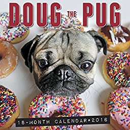 Doug the Pug 2016 Wall Calendar