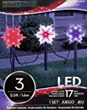 Red - White - and Blue Set of 3 Christmas Lightshow Pathway Markers