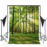 TMOTN 10x10ft Nature Forest Photography Backdrop Vinyl Photo Background Sunshine Grass Scene Studio Props D1568 (Color: 1568 10x10ft, Tamaño: 10X10FT)