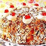 最高級洋菓子 ドイツの銘菓 シュヴァルツベルダー
