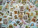 世界 キノコ切手100枚 セット