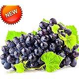 Big Promotion!100 PCS/Lot Seedless Black Grape Seeds Advanced Fruit Seed Natural Growth Kyoho Gardening Fruit...