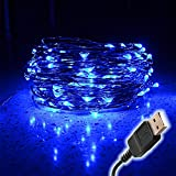 String Lights LED Lights Fairy Lights Xmas Lights Outdoor Lights -100 Leds, 33 Feet Copper Wire USB Connector...