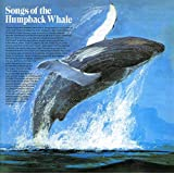 Songs Of The Humpbacked Whale -  Songs Of The Humpbacked Whale