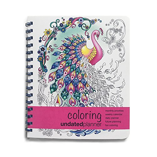 colorful day planners