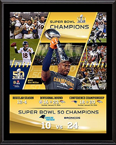 denver-broncos-12-x-15-super-bowl-50-champions-sublimated-plaque-fanatics-authentic-certified-nfl-te