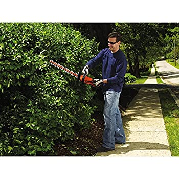 BLACK+DECKER LHT2220 20V Lithium Ion Hedge Trimmer, 22