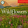 Literary Calligraphy - The Language of Wildflowers Calendar
