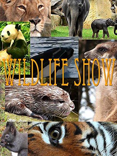 Wildlife Show on Amazon Prime Instant Video UK