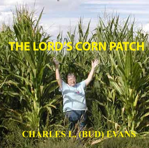 Worst Christian Book Covers of 2012