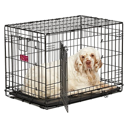 MidWest Life Stages A.C.E. Double Door Dog Crate (Midwest Double Door Crate compare prices)