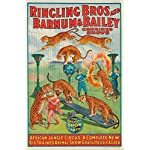 Ringling Bros and Barnum and Bailey - African Jungle Circus (window card) Vintage Poster USA c. 1922 (9x12 Collectible Art Print, Wall Decor Travel Poster)