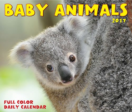 Quality Baby Animals Daily Desktop Box Calendar 2017 {jg} Great Holiday Gift Ideas - for mom, dad, sister, brother, grandparents, gay, lgbtq, grandchildren, grandma.