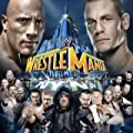 WWE WrestleMania 29: Undertaker Vs. CM Punk