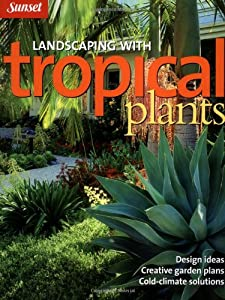 Landscaping with tropical plants design ideas creative for Garden design amazon