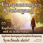 Entspannungsspaziergang: Angeleiteter Spaziergang zur kompletten Entspannung | Franziska Diesmann,Torsten Abrolat