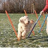 Trixie 3206 Dog Activity