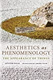img - for Aesthetics as Phenomenology: The Appearance of Things (Studies in Continental Thought) book / textbook / text book