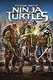 Top Movie Rentals This Week:  Teenage Mutant Ninja Turtles