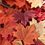 Package of Approximately 140 Assorted Rich Fall Colored Silk Maple Leaves for Weddings, Events and Decorating