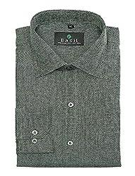 Basil Men's Jute Cotton Blend Formal Shirt (BA380PLC53FSF-42, Green, 42)