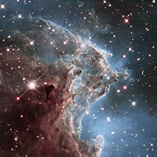 Hubble Space Telescope Ngc 2174 Monkey Head Nebula Poster Art Photo Nasa Posters Photos 12X12