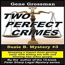 Two Perfect Crimes: Suzi B. Mystery, Book 3 Audiobook by Gene Grossman Narrated by B.J. Harrison