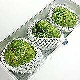 沖縄県産 アテモヤ 約1kg (2-6玉) あてもやは森のアイスクリームと言われ珍しいフルーツ (12月頃)