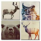 Animal Double-exposure Photography Canvas Wall Art Prints Stretched and Framed Modern Decor Beer Sika Deer & Owl paintings Giclee Artwork for Living Room and Bedroom Decoration12 x 12 Inch