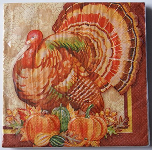 Thanksgiving Turkey Dinner Napkins - 20 ct