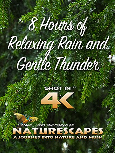 8 Hours of Relaxing Rain and Gentle Thunder on Amazon Prime Instant Video UK