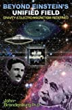 img - for Beyond Einstein's Unified Field: Gravity & Electro-Magnetism Redefined book / textbook / text book